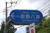 忍野八海.JPG